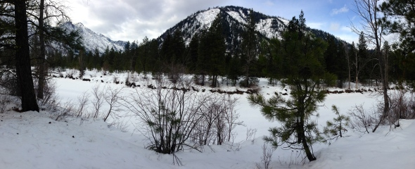 Icicle Creek